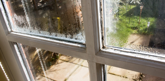 Window in Need of Window Replacement Companies in Bloomington IL